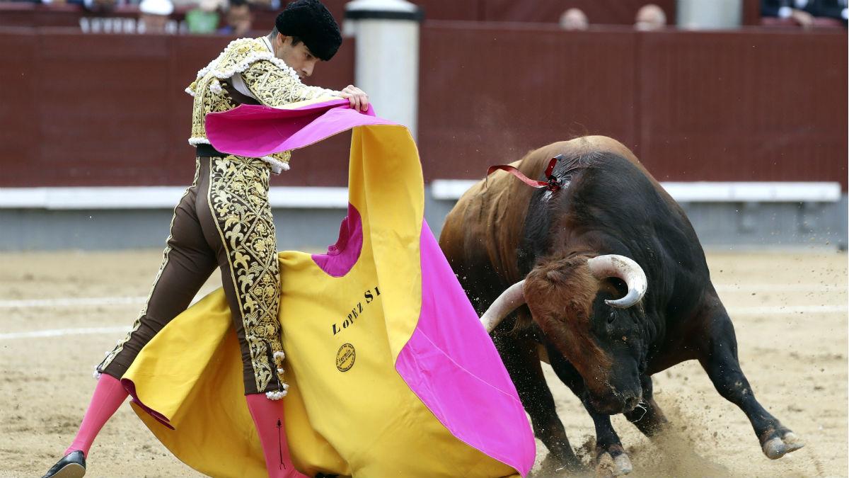 López Simón, con el capote ente su primero de la tarde, en Las Ventas, el día de San Isidro. (EFE)