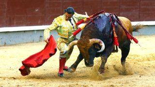 David Mora durante la faena a su segundo toro (Foto: Efe).