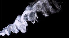 Aprende a interpretar las señales de humo.