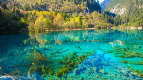 Los lugares más coloridos de la naturaleza terrestre