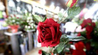 Un ramo de rosas en el interior de una floristería (Foto: EFE)