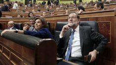 Mariano Rajoy y la bancada del PP en el Congreso de los Diputados (Foto: Francisco Toledo)