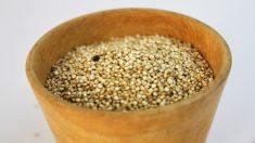 Amaranto, el superalimento ideal para adelgazar