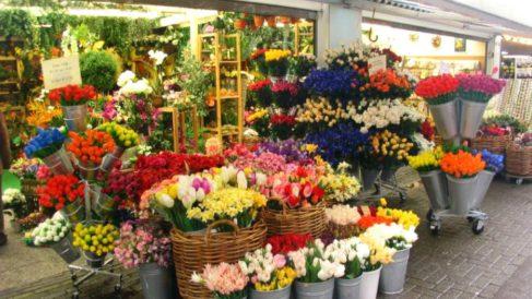 Género expuesto en el exterior de una floristería.