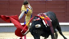 Fernando Robleño durante la faena a su primer toro (Foto: Efe).