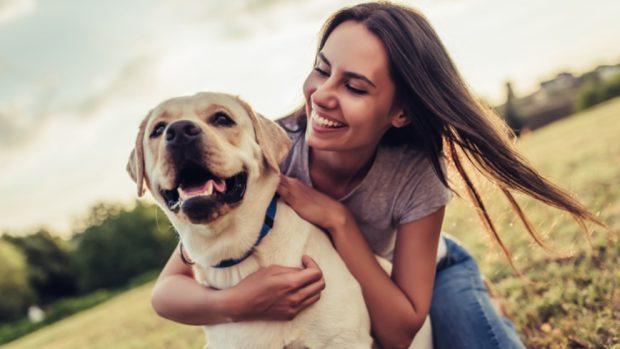 Cómo educar a un perro