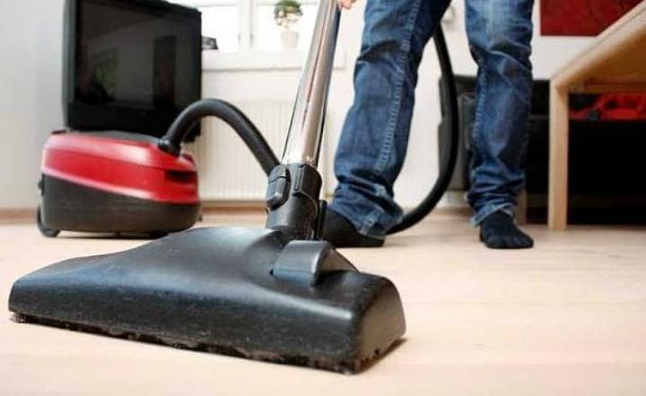 Quitar pulgas de casa como eliminar las pulgas de manera - Pulgas en casa ...