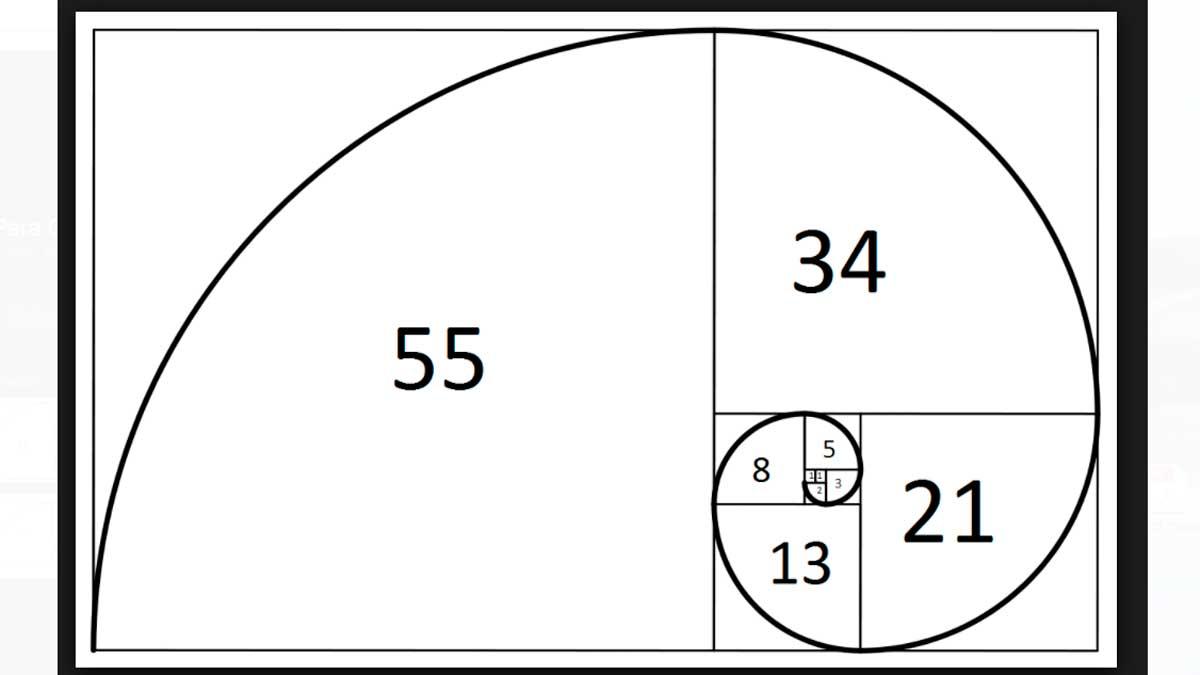 Los números de la sucesión de Fibonacci se acercan al número de oro del segmento áureo