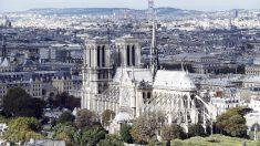 Catedral de Notre Dame, París. (Foto: AFP)