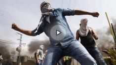 Un joven palestino lanzando piedras a las fuerzas de seguridad.