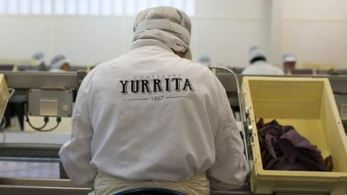 Elaboración de anchoas en Yurrita Group (Foto: Yurrita Group)
