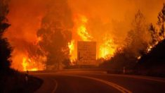 Incendio en Leiria, en Portugal.