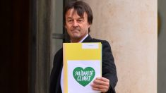 Nicolas Hulot, ministro de Transición Ecológica de Francia (Foto. Getty)