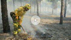 Un bombero realizando labores de extinción del fuego declarado en Moguer. Foto: EFE