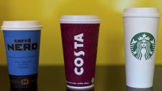 Encuentran bacterias fecales en Starbucks, Costa Coffee y Caffè Nero (Foto:Getty)