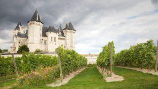Chateau Saumur en Burdeos (Foto: istock)