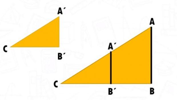 teorema tales