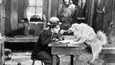 El cine de Charlie Chaplin marcó una época