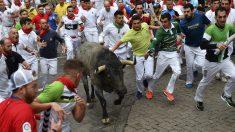 'Diputado', el toro de José Escolar que se ha quedado rezagado en el segundo encierro de los sanfermines. (EFE)