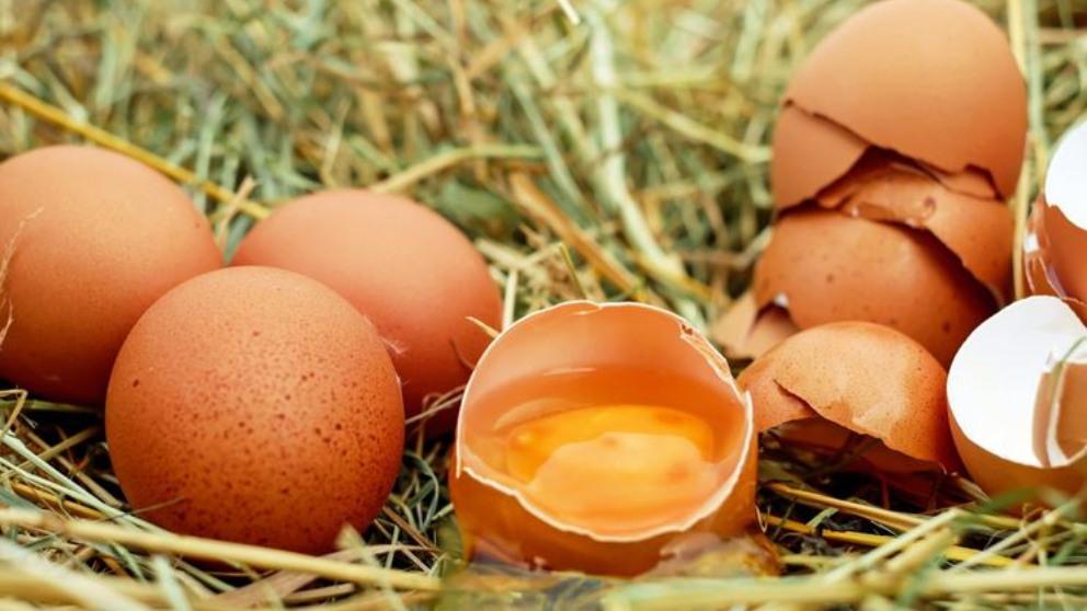 Huevos camperos.
