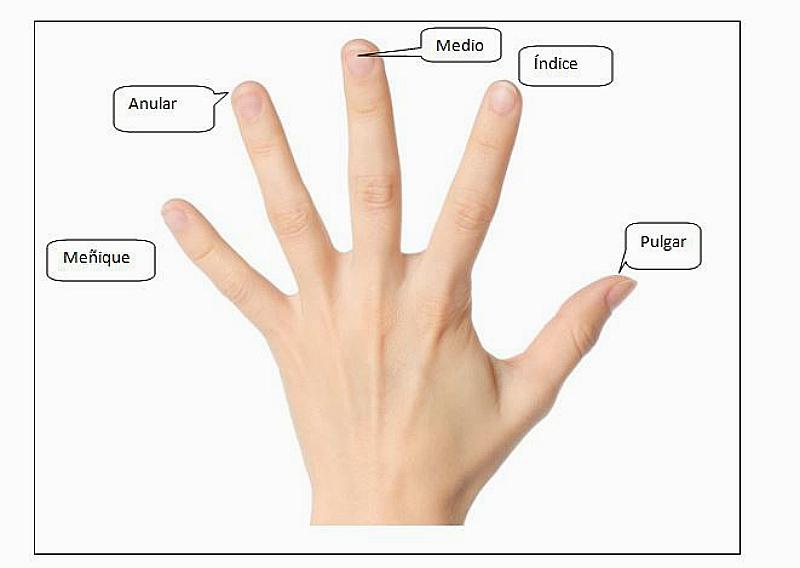 tríos dedos de los pies