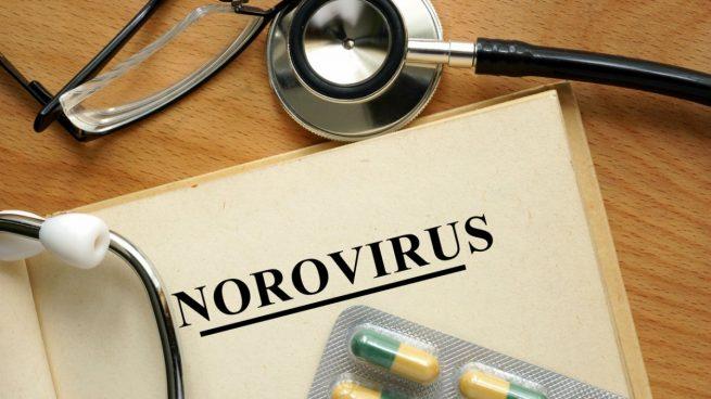 virus de vomito diarrea