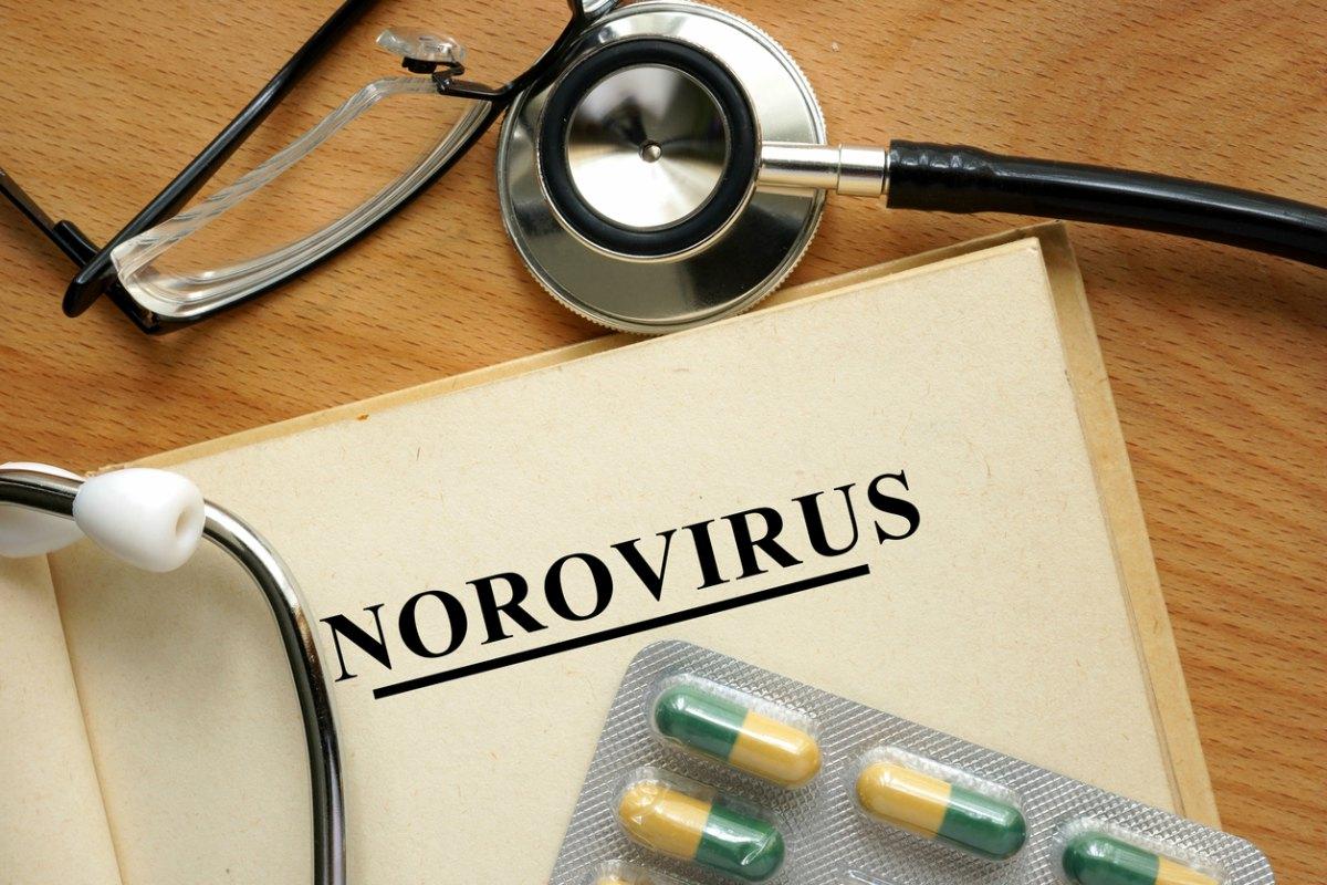Virus estomacal