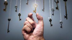 Aumento de beneficios generando valor (Foto. IStock)
