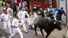 Imagen de archivo de un encierro de toros de San Sebastián de los Reyes