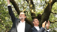 Mariano Rajoy y Alberto Níñez Feijóo en un acto en Galicia (Foto: Efe).