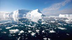 Un estudio realizado por el Centro Helmholtz de Investigación Polar.