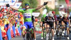 Matteo Trentin gana la 13ª de la Vuelta. (AFP)