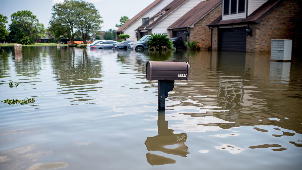 Huracán 'Harvey' a su paso por Houston, Texas. (Foto: AFP)