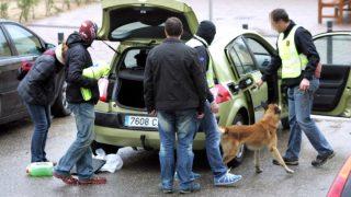 La Unidad Canina de los Mossos busca drogas y explosivos en el interior de un vehículo.