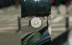 Un colegio de Manresa envía a sus alumnos a proferir cánticos separatistas a la comisaría de Policía