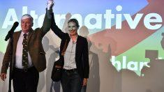Alexander Gauland, de AdD, celebra los resultados en Alemania (Foto: AFP)