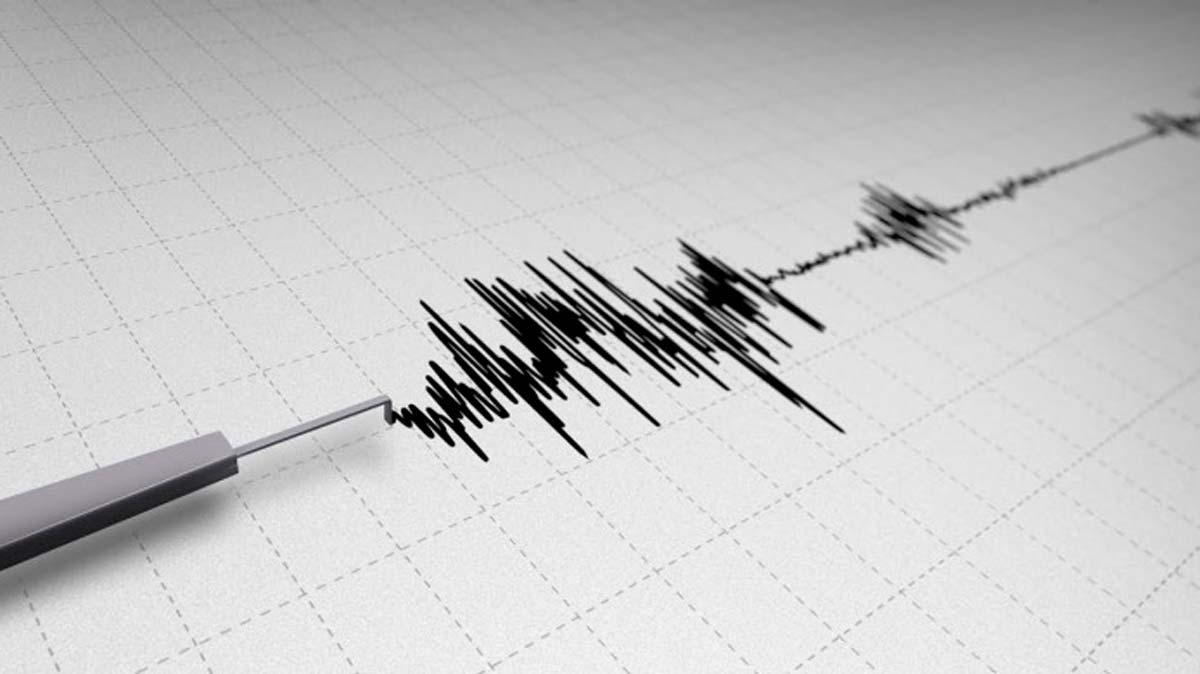 La escala de Richter es el baremo que se utiliza para la medición de los terremotos