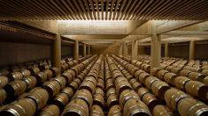 Investigadores españoles crean un vino que no deja resaca (3)
