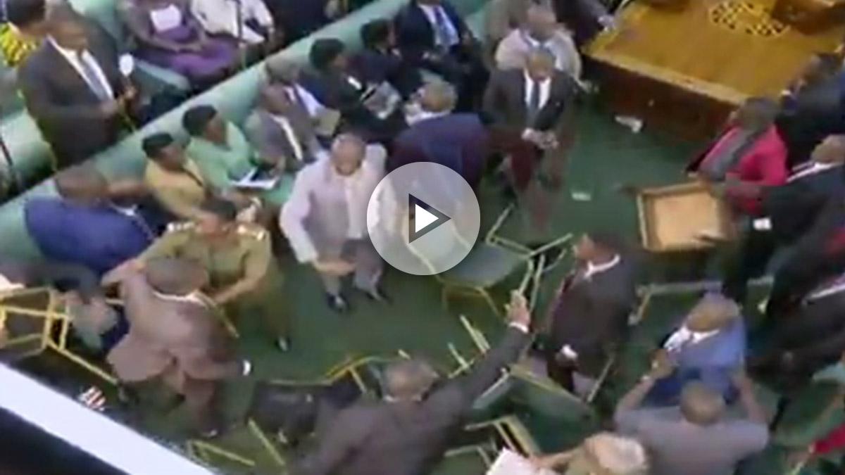 Pelea entre diputados del Parlamento de Uganda.