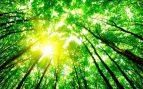 La concienciación energética llega a las aulas