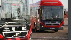 Los autobuses y tranvías de Zaragoza se reforzarán en los Pilares 2017