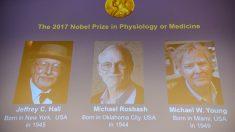 Jeffrey Hall, Michael Rosbash y Michael Young, distinguidos con el Premio Nobel de Medicina 2017. (Foto: AFP)