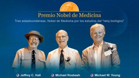 Investigadores del ritmo circadiano ganan el Premio Nobel de Medicina (EFE)