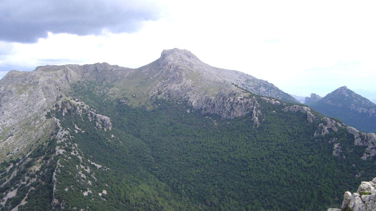 Zona del Puig de Massanella próxima al  lugar del accidente.