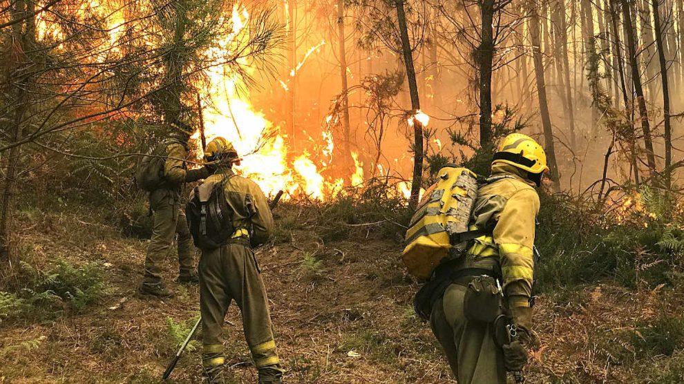 Bomberos en un incendio forestal (Foto: Efe).