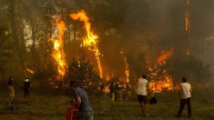 Voluntarios trabajan para ayudar en la extinción de un incendio. (Foto: EFE)