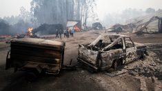 Efectos de los incendios en Galicia en As Neves, Pontevedra. (Foto: EFE)