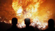 Fuego en Nigrán, en Pontevedra. (Foto: EFE)