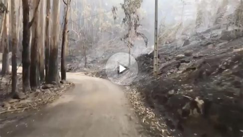 Óscar Pereiro muestra las zonas quemadas en Galicia