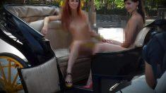 Las imágenes de mujeres desnudas en un coche de caballos de Sevilla circulan por las redes.